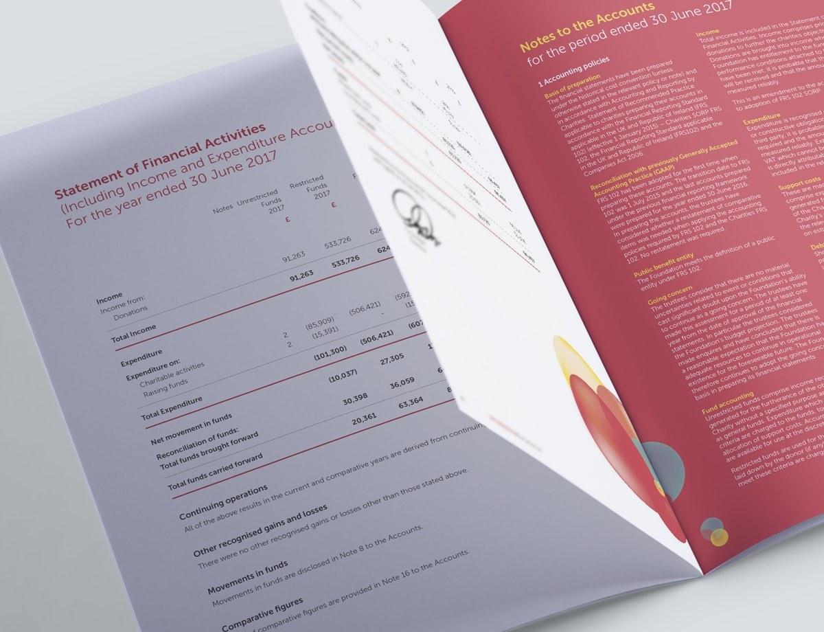 Charity Annual Report Design - Financial Data Spread