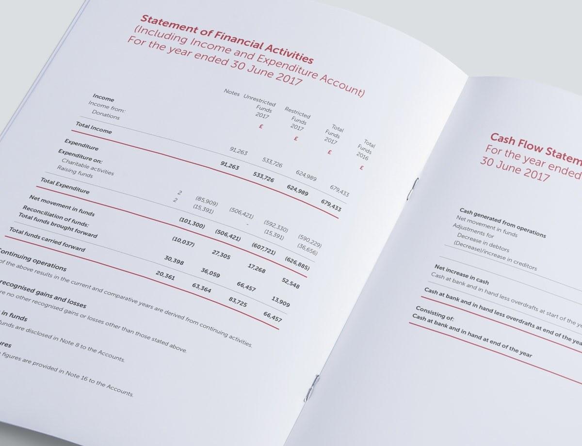 Charity Annual Report Design - Key Financials Spread