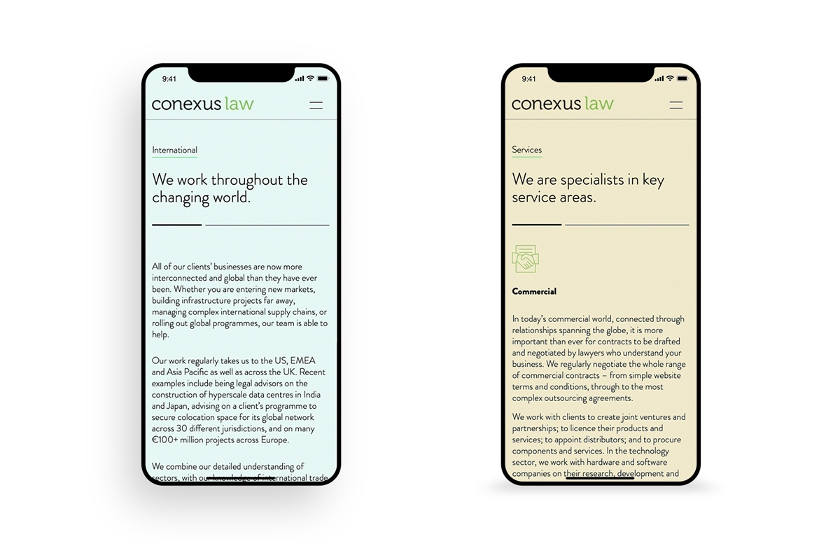 Conexus Law Website International Services